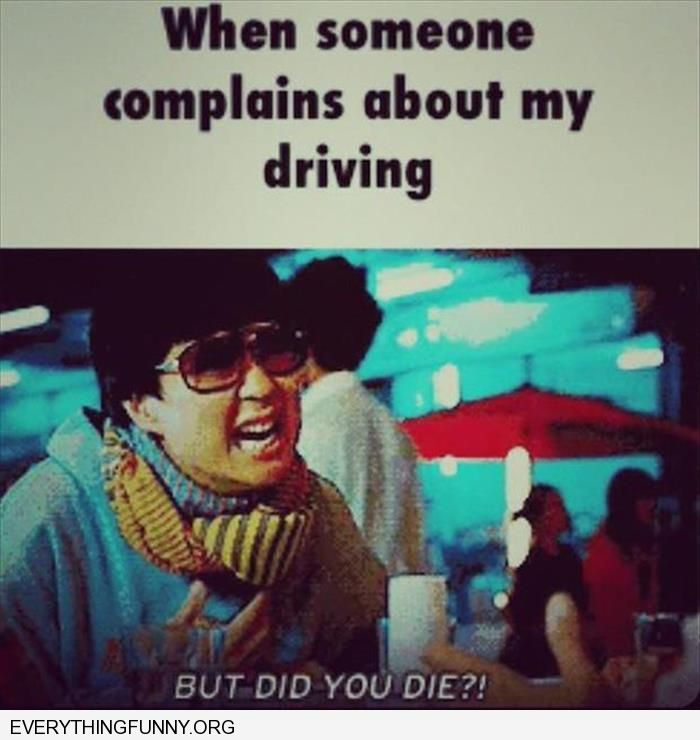 funny caption when people complain about my driving but did  you die from movie hangover