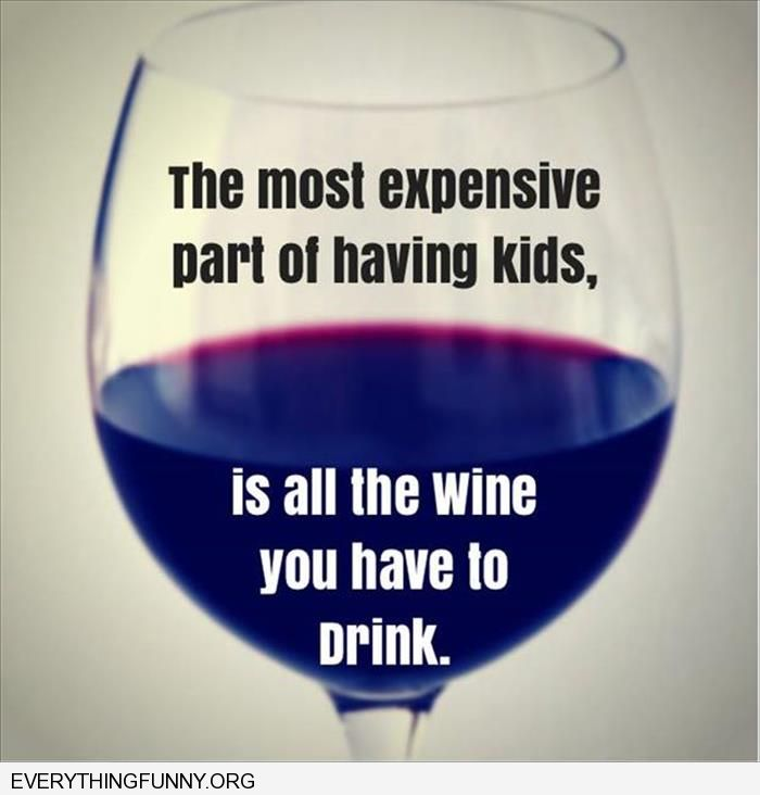 funny caption the most expensive part of having kids is all the wine you have to drink