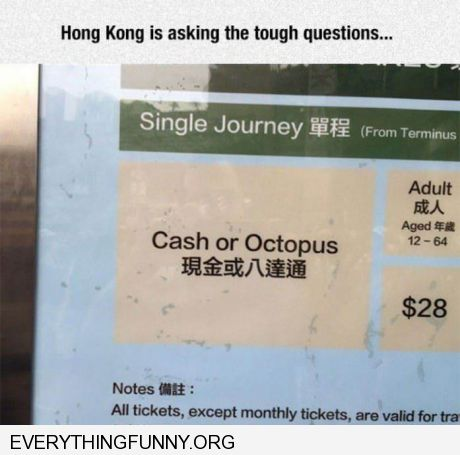 funny caption cash or octopus Honk Kong is asking the tough questions