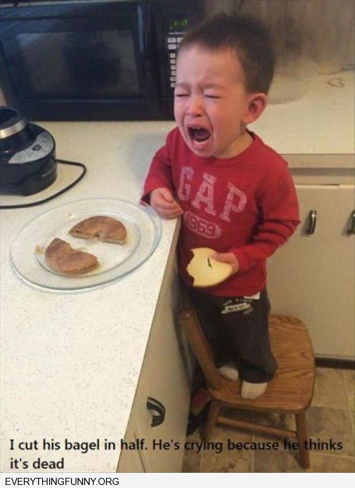 funny caption little buy cries because i cut his bagel and he thinks its dead