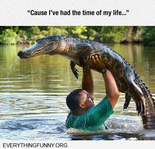funny captoin man holds alligator crocodile over head just like dirty dancing move i've had the time of my life