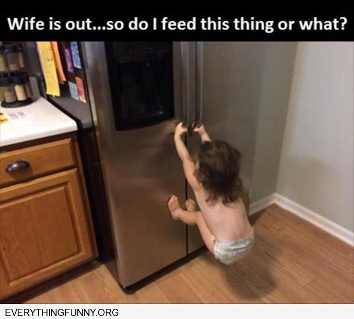 funny caption wife is out so do i feed this thing little girl refrigerator
