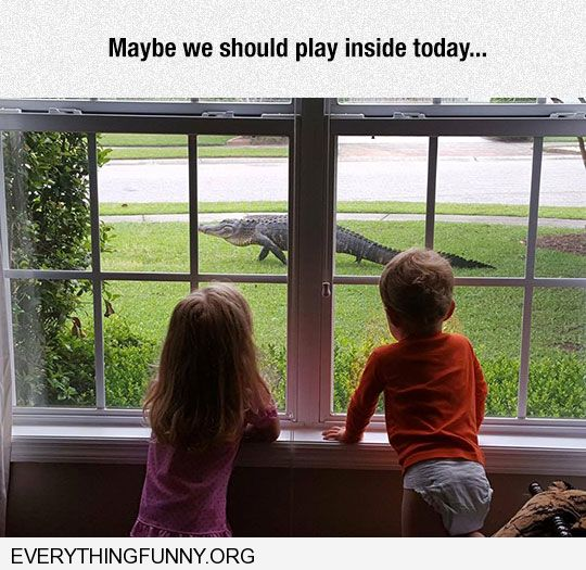 funny caption kids watching alligator crocodile in front yard i think we'll play inside today