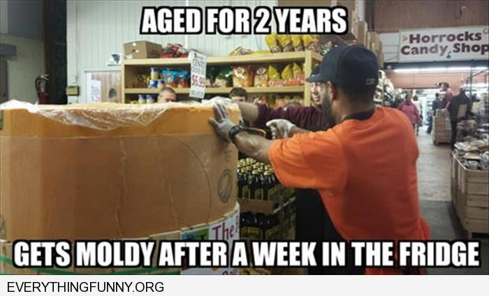 funny caption cheese aged for 2 years moldy after week in the fridge