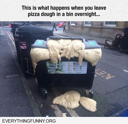 funny caption what happens when you eave dough out overnight in bin