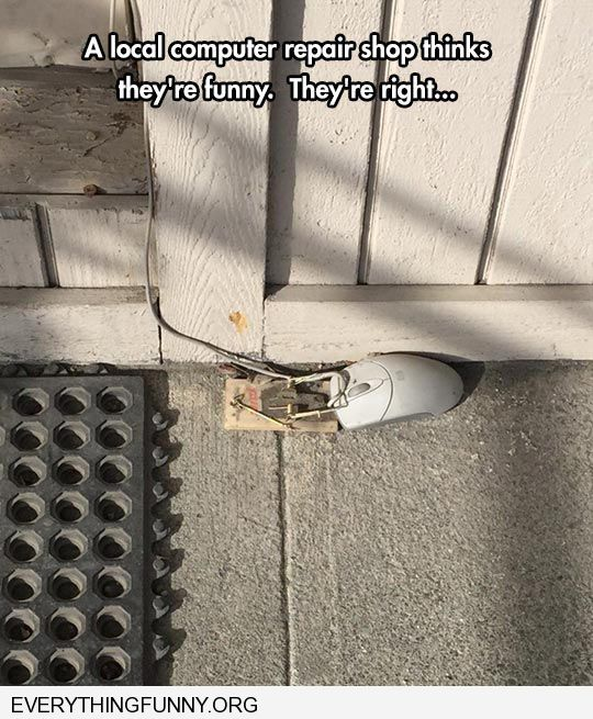 funny caption local computer company thinks its funny catches computer mouse in mouse trap