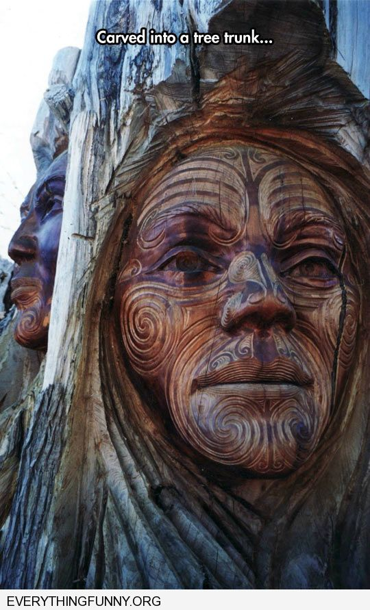 funny awesome indian face carved into tree amazing carving