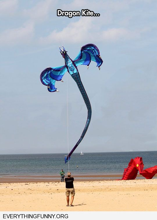 funny caption awesome dragon kite