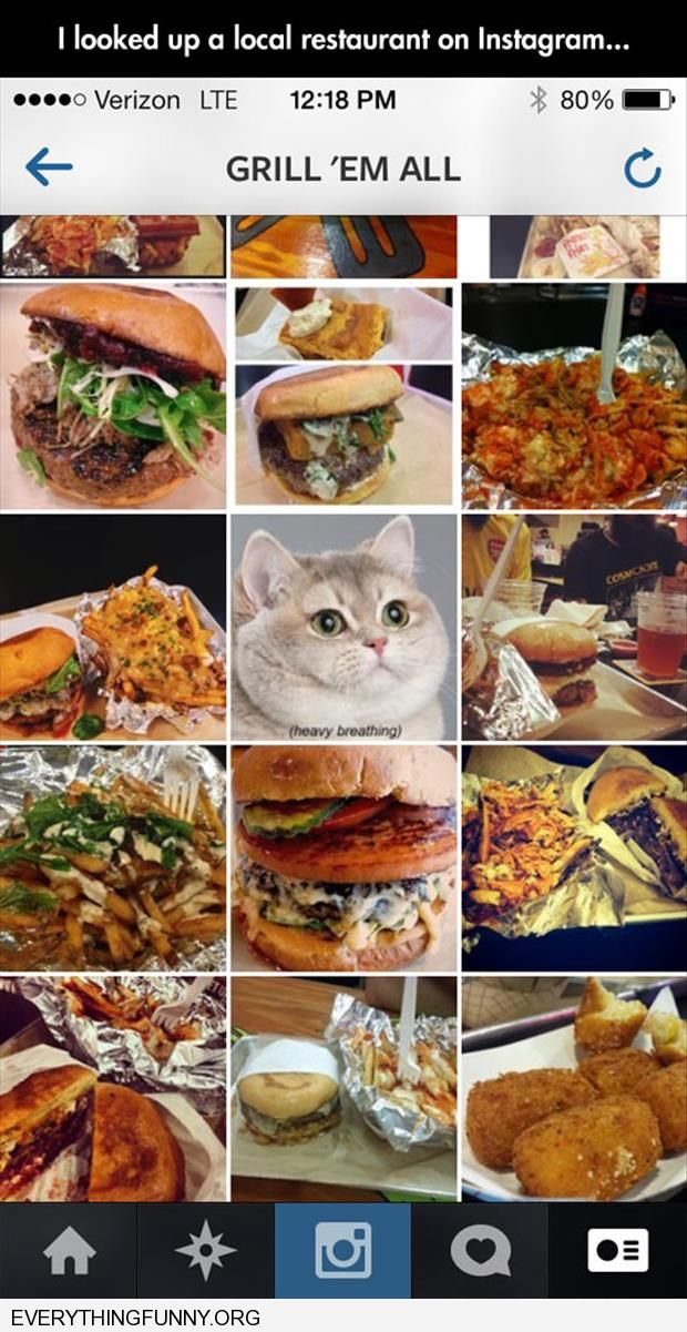 funny menu has pics of food and cat heavy breathing meme in the middle