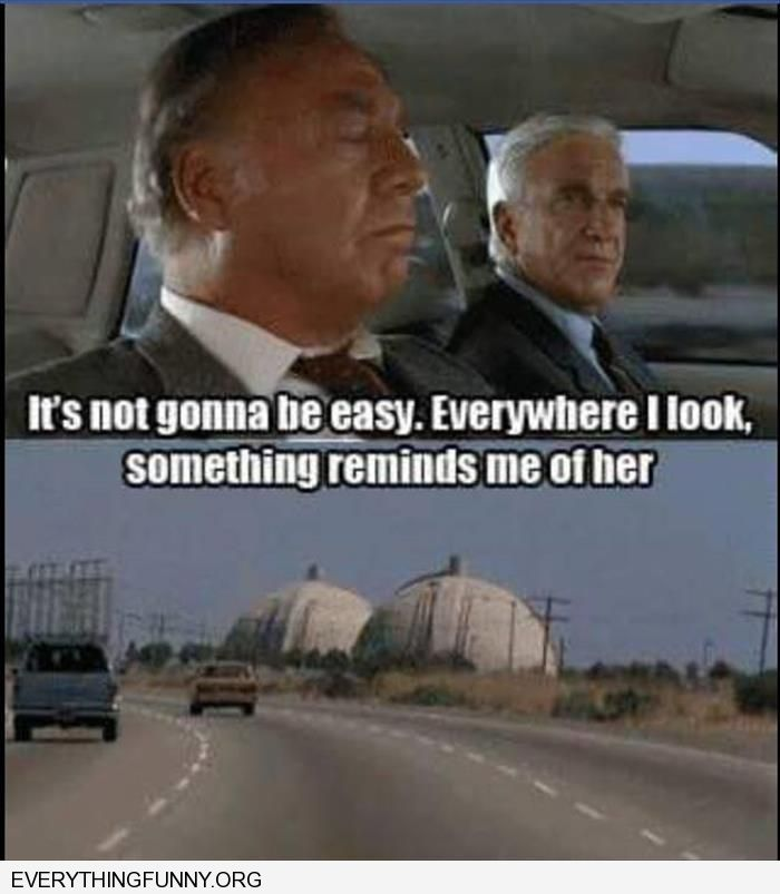 funny caption leslie neilson naked gun everything reminds me of her boob towers