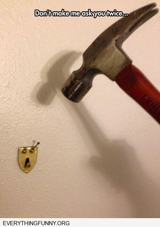 funny nail bracket looks scared of hammer caption