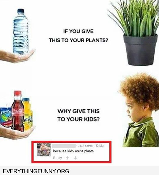 funny caption if you give water to your plants why do you give soda to your kids because my kids are not plants