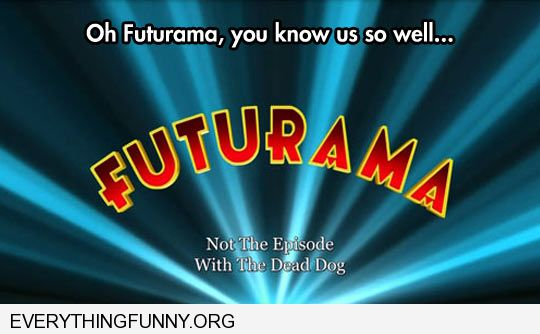 funny futurama you know me so well not the episode with the dead dog
