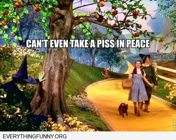 funny wizard of oz pic witch behind tree can't even take a piss in peace