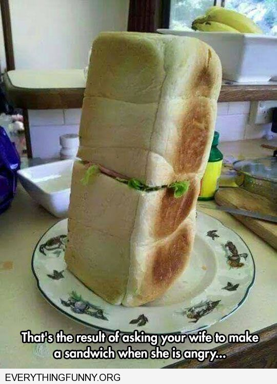 funny caption this is what happens when you ask your wife to make you a sandwich and she's mad at you
