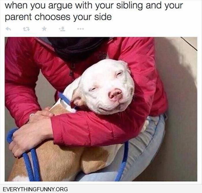 funny when you fight with your sibling and your parent takes your side