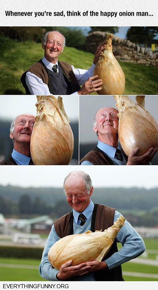 funny caption whenever you re sad think of the happy onion man