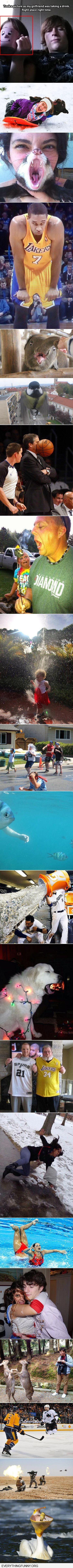 funny caption perfectly timed photos
