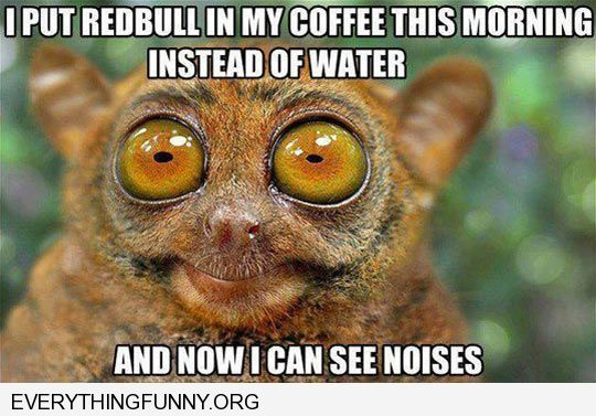 funny caption put redbull in my coffee and now i can see noises