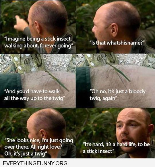 an idiot abroad it's must be hard being a stick figure bug