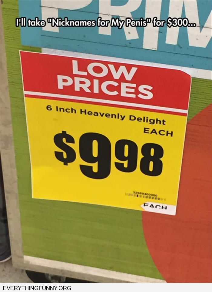 funny caption 6 inches of heavenly delight nicknames for my penis $300