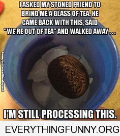 funny caption high friend brings me oreo on ice still processing this