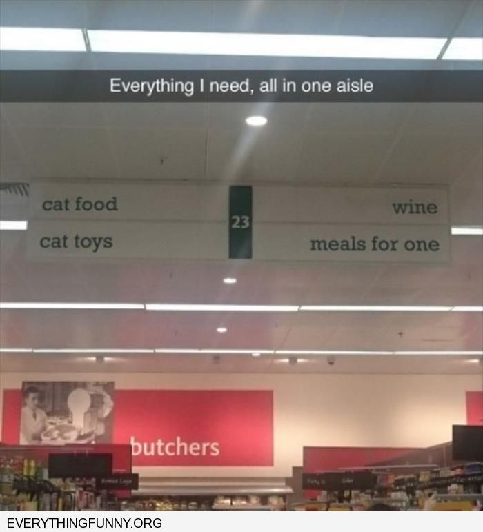 funny caption everything i need in one aisle cat food cat toys wine meals for one