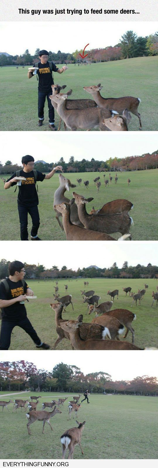 funny caption poor guy gets mobbed by deer when trying to feed just a couple