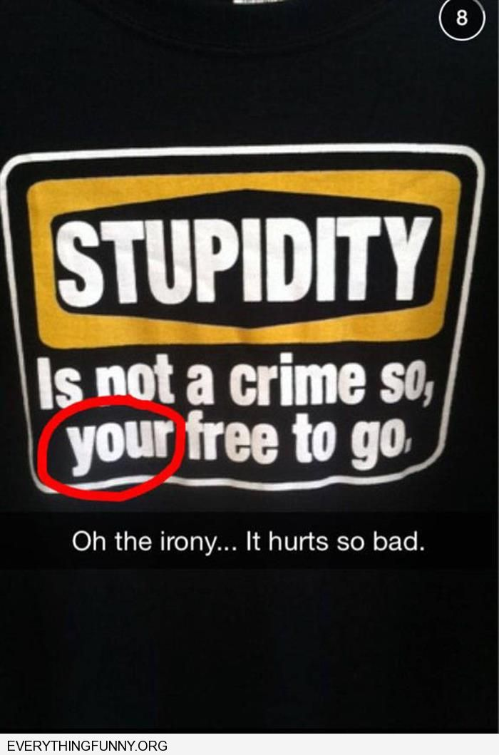 funny caption stupidity is not a crime your free to go oh the irony