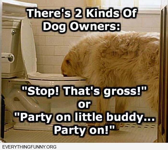 funny caption two kinds of dog owners when dog drinks out of toilet