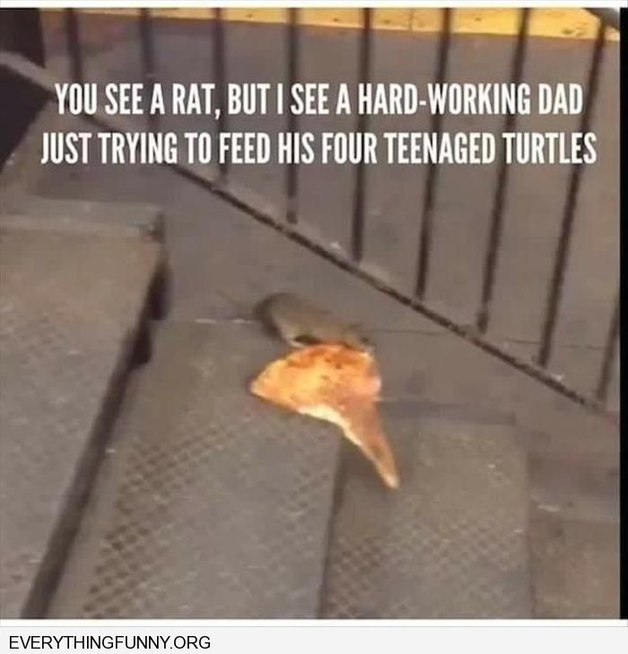 funny you see a rat carrying pizza i see a dad working hard to feed his four  teenaged turtles