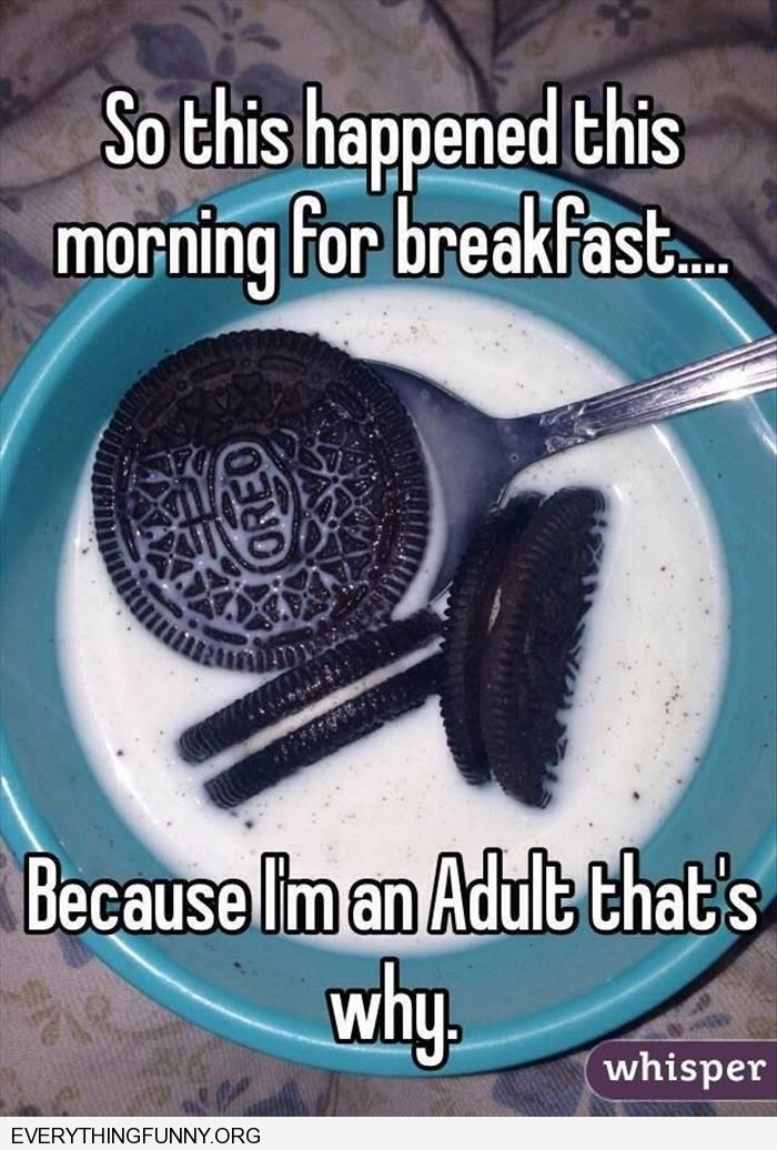 funny captions so this happened for breakfast oreos in milk because I'm an adult that's why