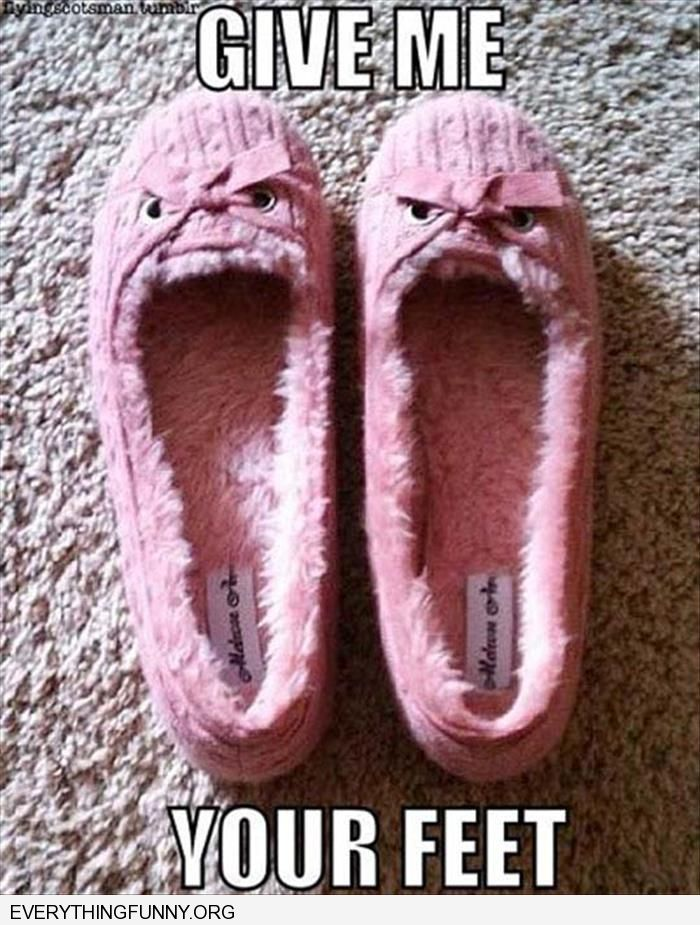funny caption angry slippers give me your feet