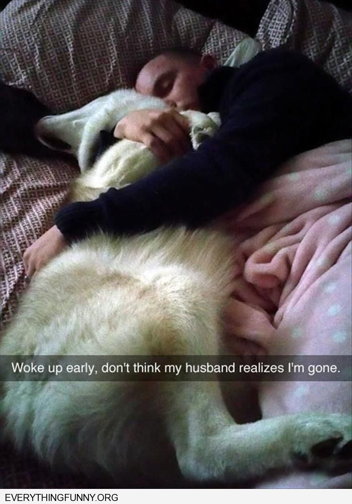 funny caption woke up early don't think my husband misses me sleeping in bed hugging dog