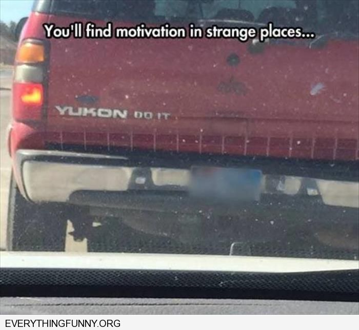 funny caption you can find inspiration in the strangest places yukon do it
