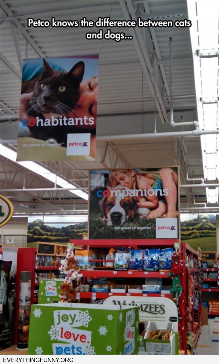 funny signs at petco cats cohabitants dogs companions