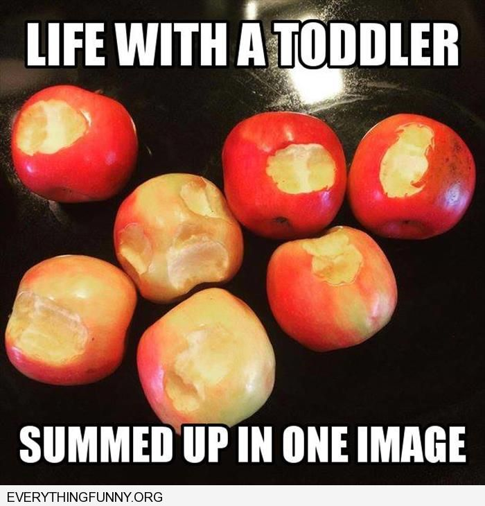 funny captions life with a toddler in one picture took a bit out of every apple