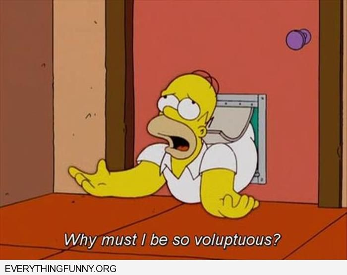 funny cartoons simpsons homer stuck in dog door why do i have to be so voluptuos