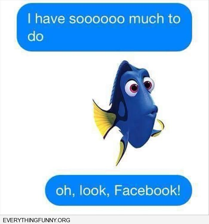 funny cartoon dory nemo caption i have so much to do oh look facebook