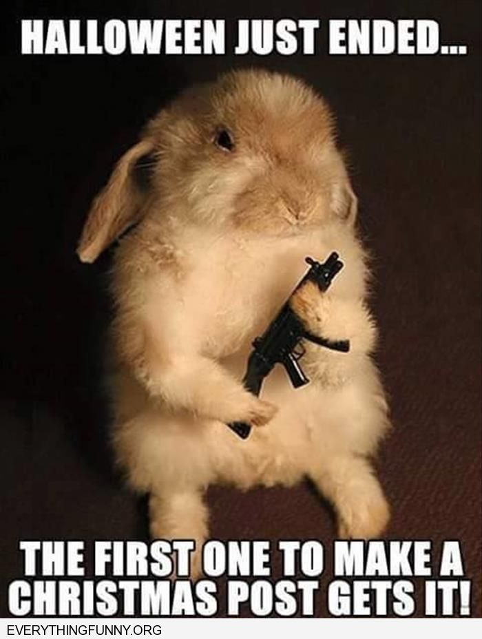 funny caption bunny holding a gun halloween is over the first one to make a christmas post gets it