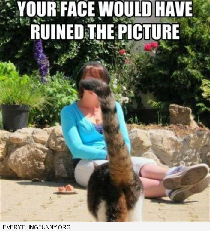 funny cat photobomb tail in womans face