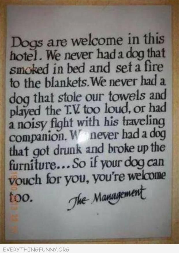 funny signs, funny billboards, funny dogs allowed in hotel,