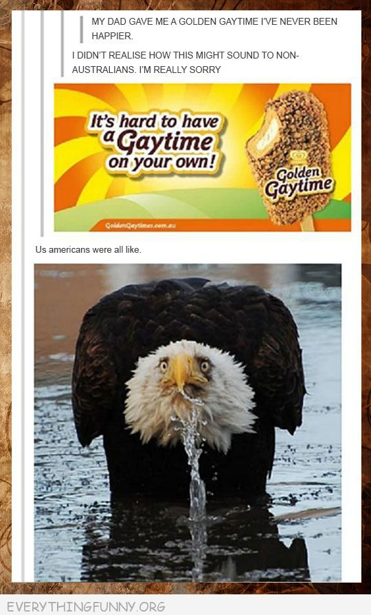 funny status canada golden gaytime