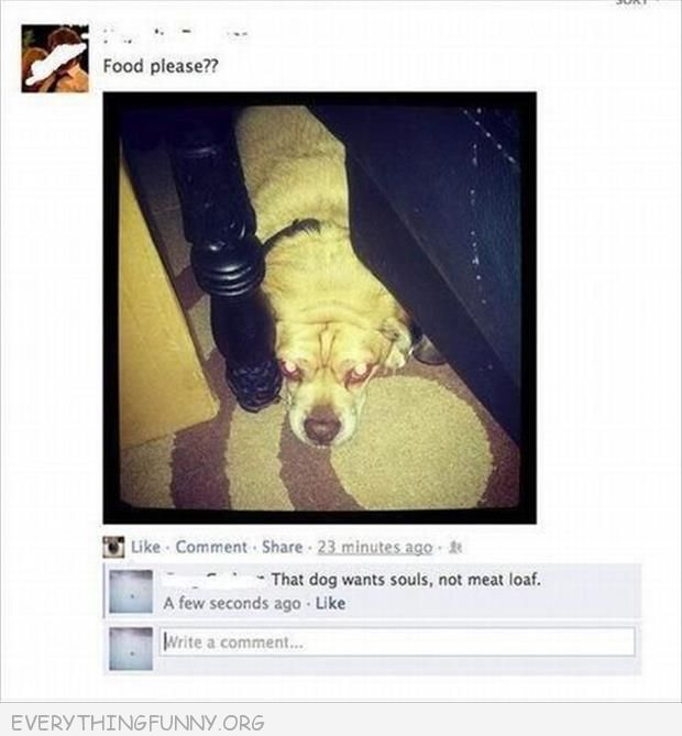 funny facebook comments, funny facebook, funny texts, funny comments,