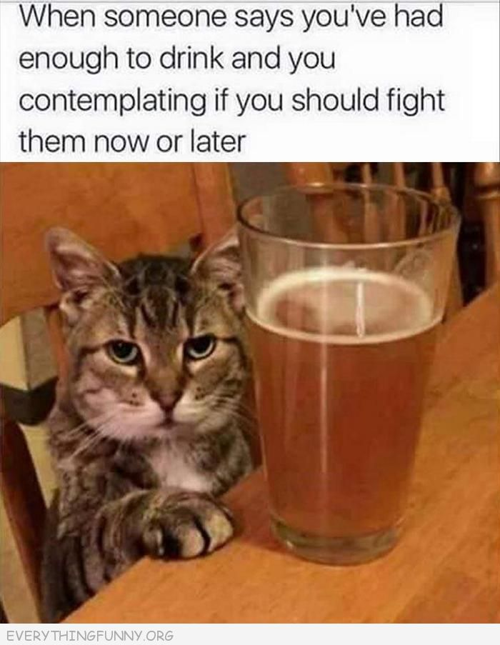 funny quote post when someone says you've had enough to drink and you are contemplating if you should fight them now or later everythingfunny.org