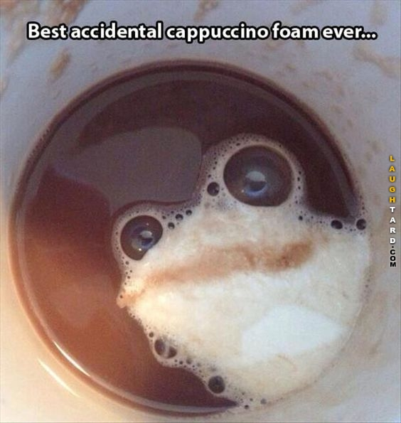 funny photo best accidental cappuccino foam ever looks like frog things that look like other things,