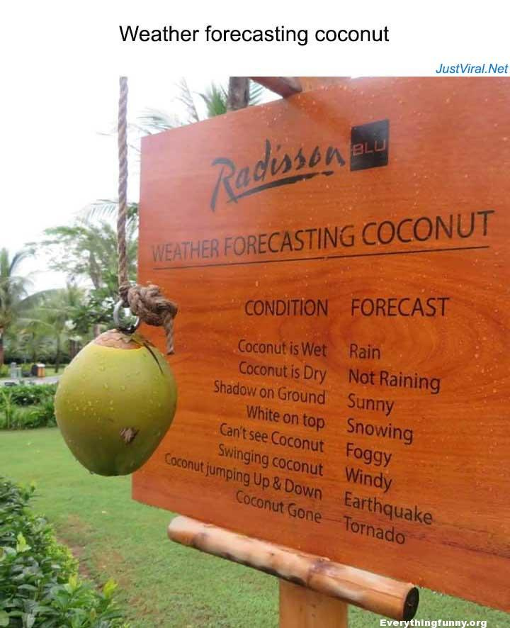 funny sign billboard picture weather forecasting coconut