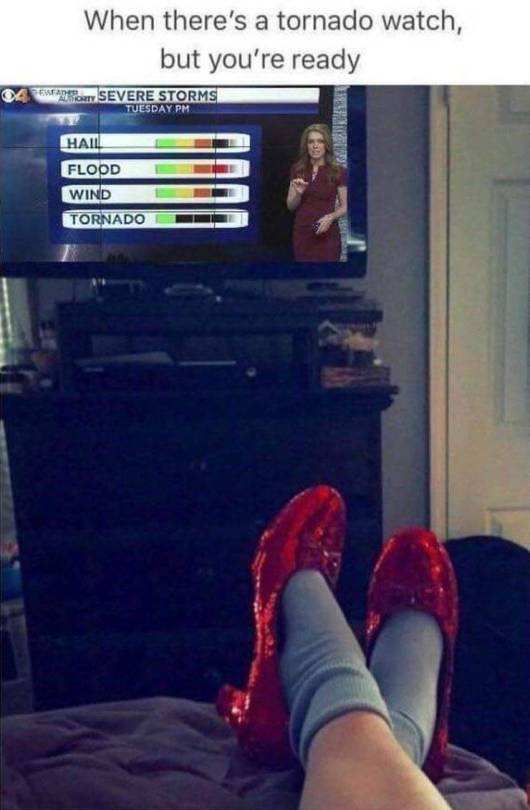 when there is a tornado watch but you're reading wearing ruby slippers