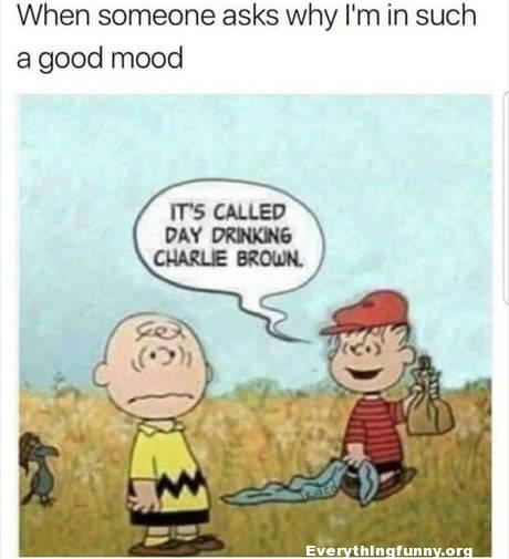 funny cartoon funny peanuts cartoon when someone asks why I'm in such a good mood its called day drinking charlie brown