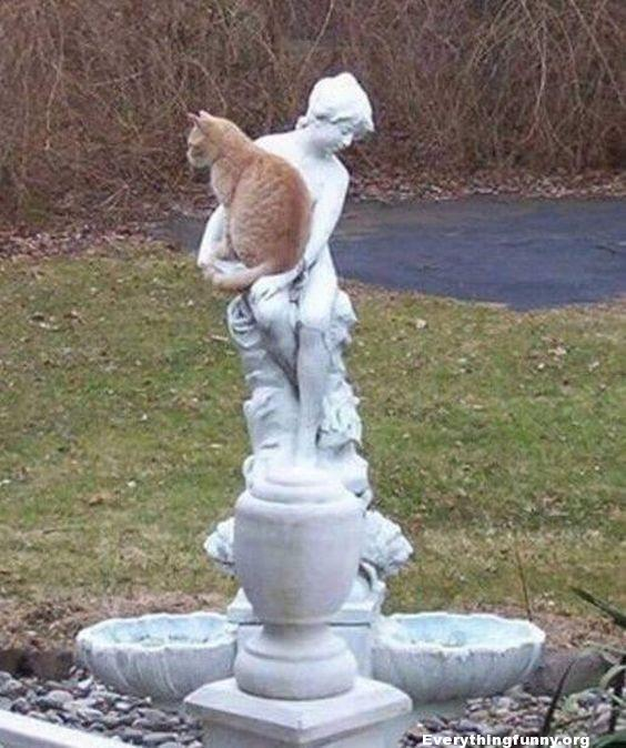 funny cat photo cat sits in statues arms